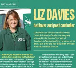 Bat Lover & Pest Controller